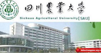 Đại học nông nghiệp Tứ Xuyên