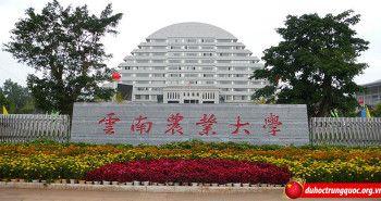 Đại học nông nghiệp Vân Nam