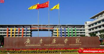 Đại học dược Quảng Đông