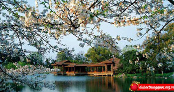 Những địa điểm không thể bỏ qua tại Trung Quốc khi xuân về