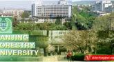 Đại học Lâm nghiệp Nam Kinh – Du học Trung Quốc