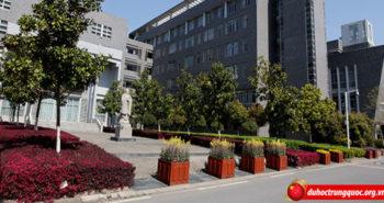 Thỏa ước mơ học Dược với Học bổng miễn 100% học phí  Đại học Y Dược Trung Quốc