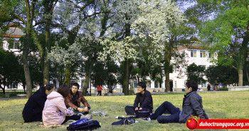 Những hình ảnh về trường Đại học bách khoa Quế Lâm