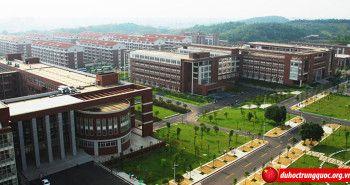 Đại học Trường Sa