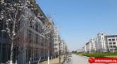 Các trường Đại học có học bổng tỉnh Giang Tô, Trung Quốc