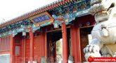 Trung Quốc – 10 ngành học đắt giá nhất