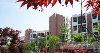 Đại học Dược Trung Quốc – Top trường đào tạo y dược tốt nhât Trung Quốc